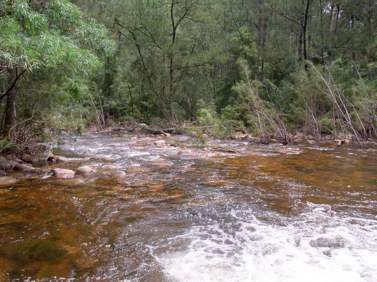 Wadbilliga River Wikipedia