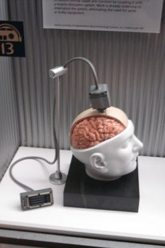 File:Brain-Computer intrusive.jpg