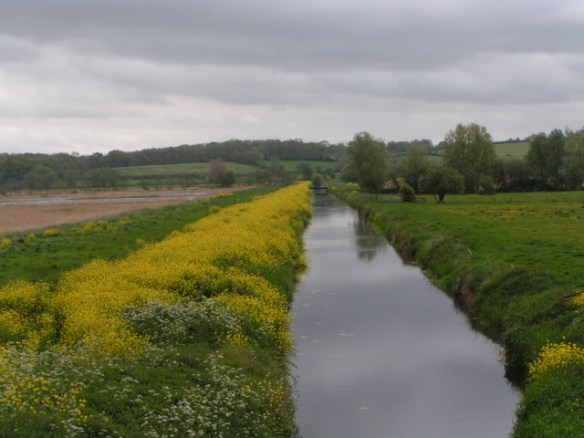 Somerset Levels drainage canal