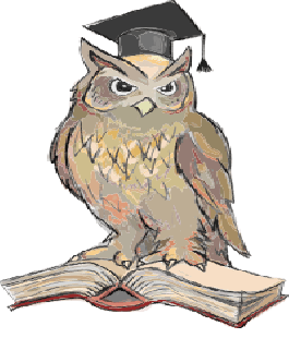 English: An owl on an open book with a hat
