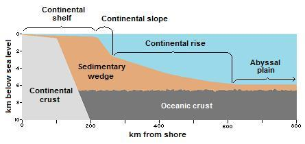 ocean floor profile diagram 2004 f150 starter wiring historical geology/marine sediments - wikibooks, open books for an world
