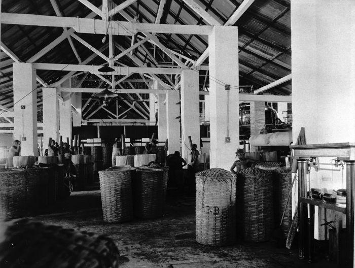 pekerja pabrik gula kalibagor dulu