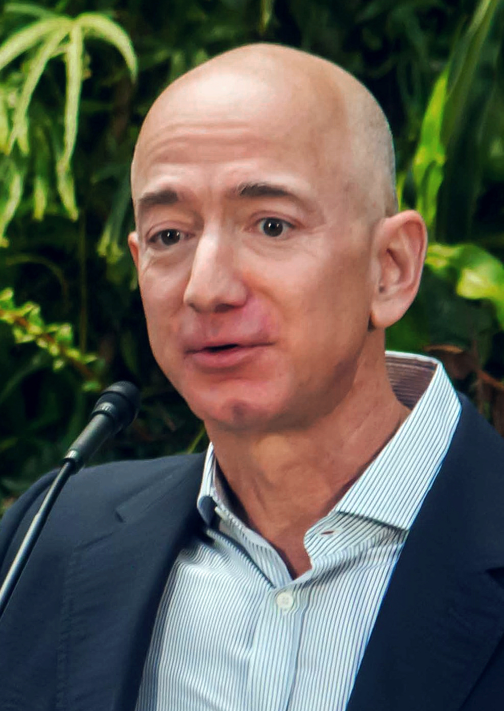 Jeff Bezos Salary Amazon Prime Is On Pace To Become More Popular Here39s A Fantastic Diagram Of What Essentially Cable Network Looks 2018 Wife Net Worth Tattoos Smoking And Body