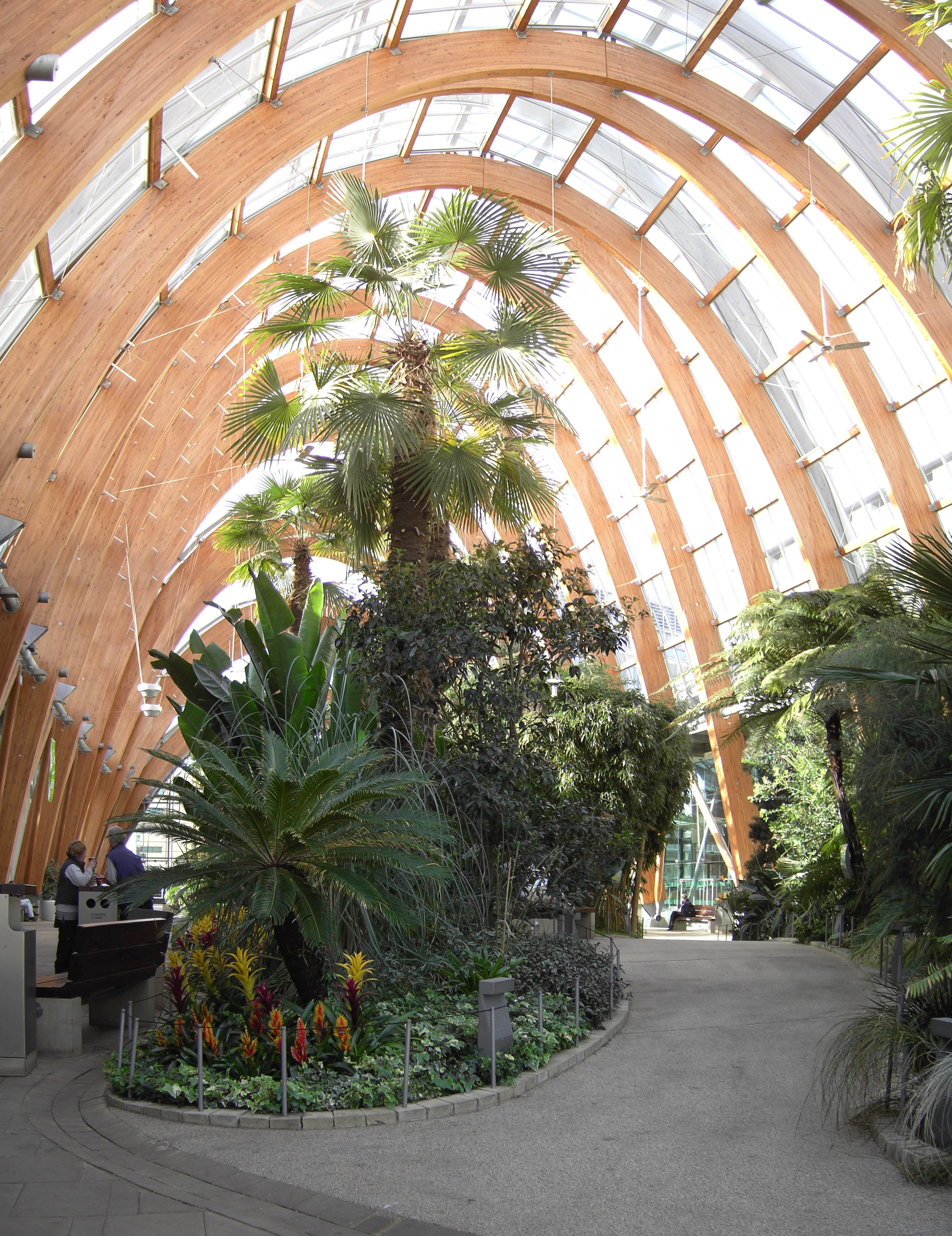 Sheffield Winter Garden  Wikiwand