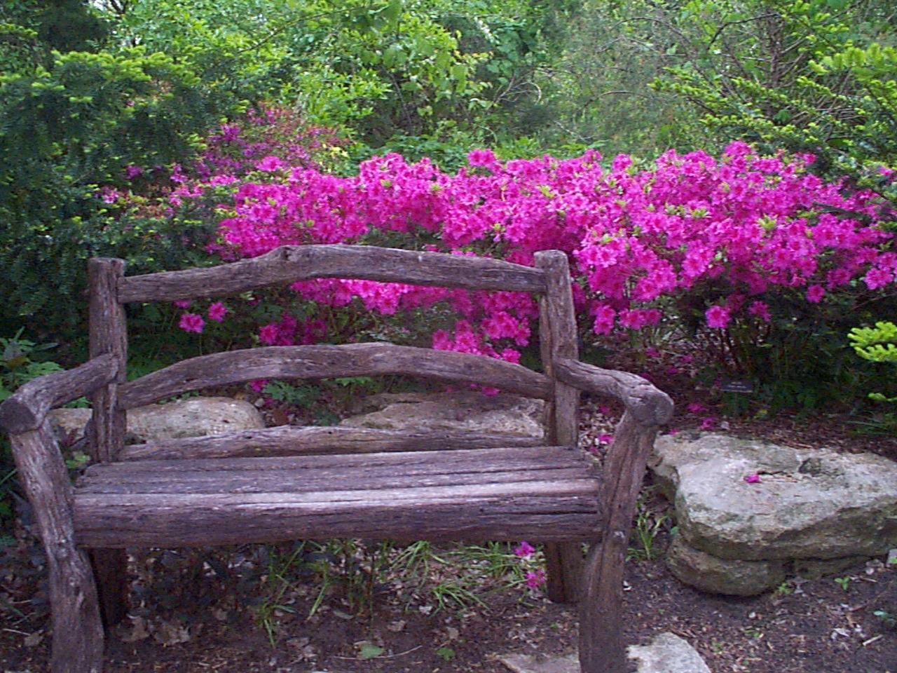 Wichita Botanic Gardens