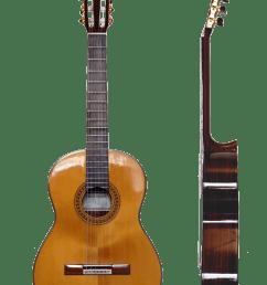 taylor guitar wiring diagram [ 1051 x 1600 Pixel ]