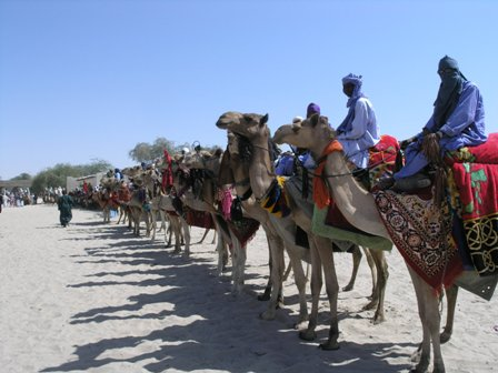 File:Nguigmi niger camel riders welcome 2009.JPG