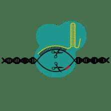 201412 CRISPRCAS9blue