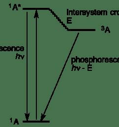 jablonski diagram [ 1192 x 926 Pixel ]