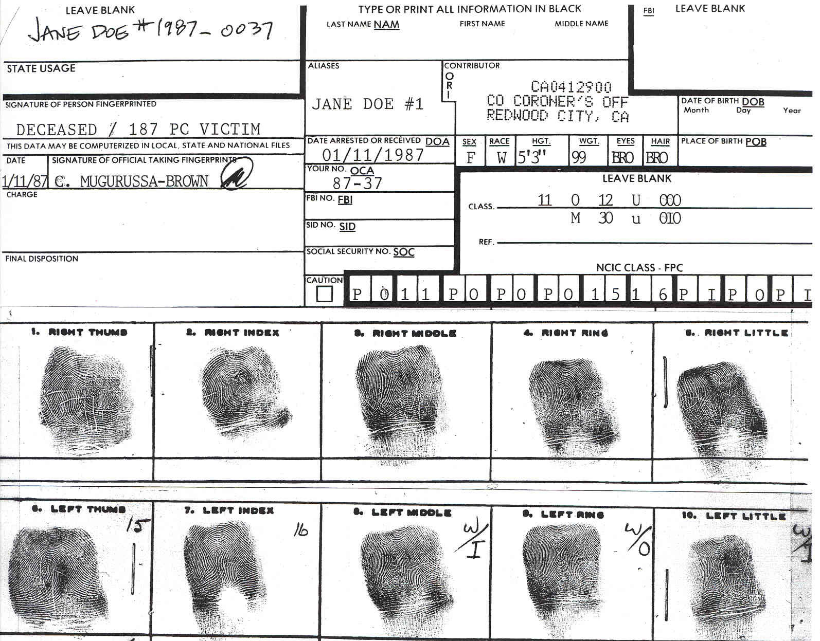 File San Mateo County Jane Doe Fingerprint Chart