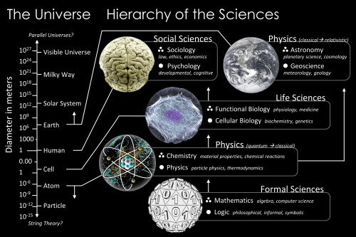 small resolution of branches of science