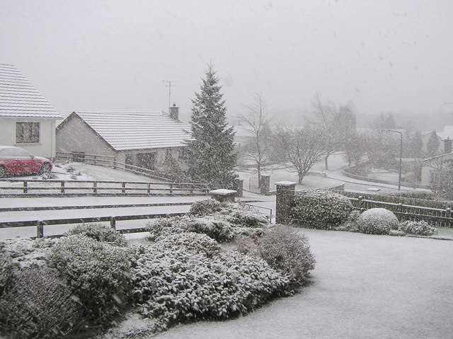 File:Whiteout at Knockgreenan Avenue, Omagh - geograph.org.uk - 129546.jpg