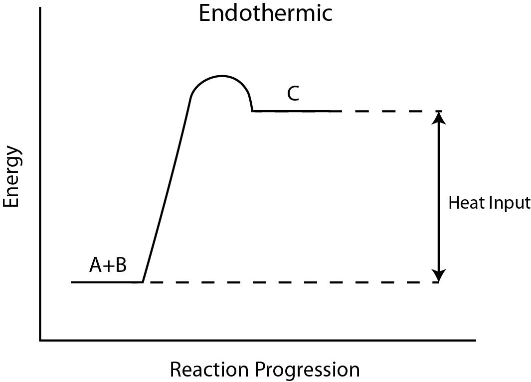 Chemistry 12 Worksheet 12 Potential Energy Diagrams – Endothermic and Exothermic Reactions Worksheet