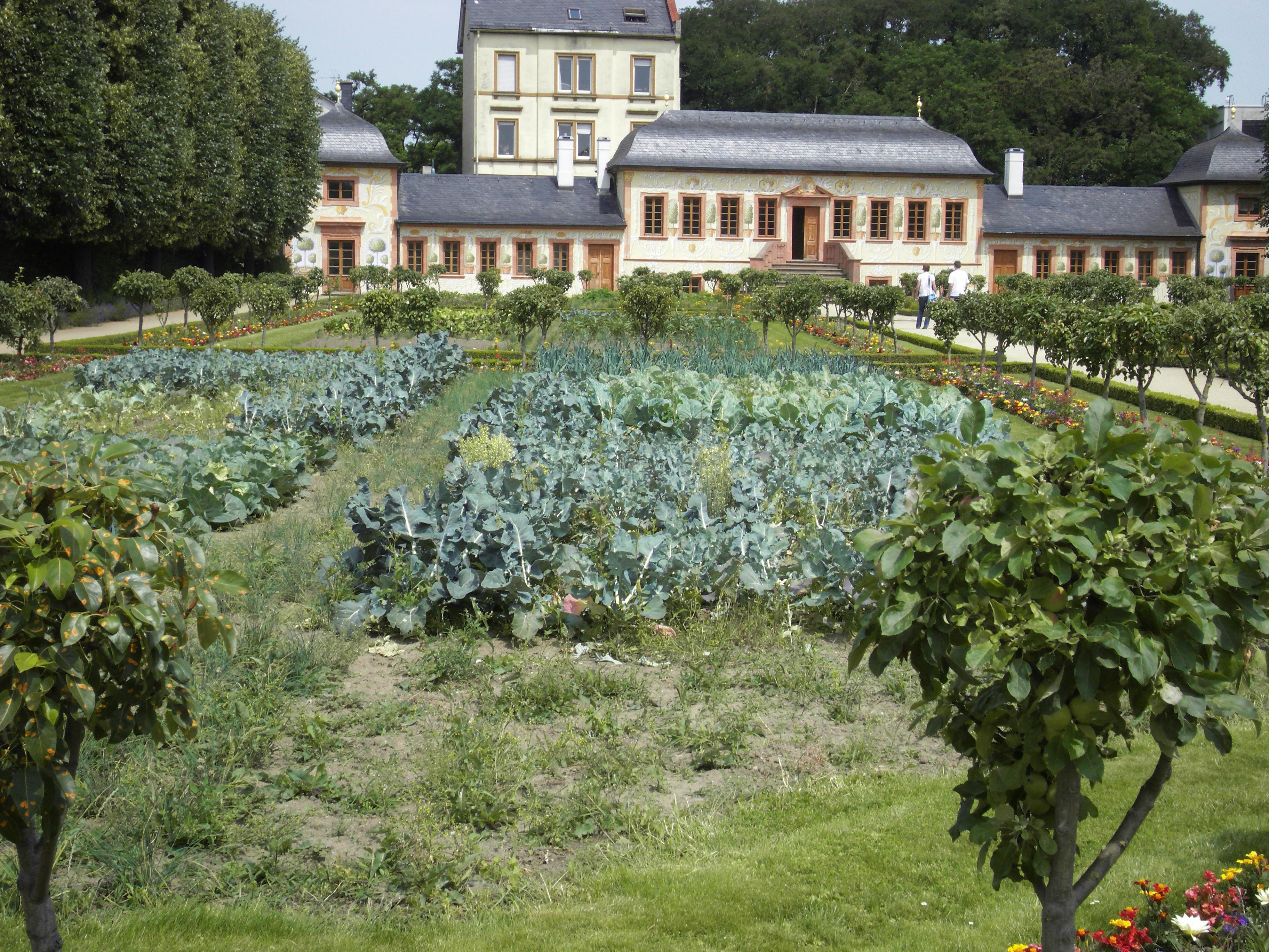 File Gemuesegarten Im Prinz Georg Garten Darmstadt Wikimedia