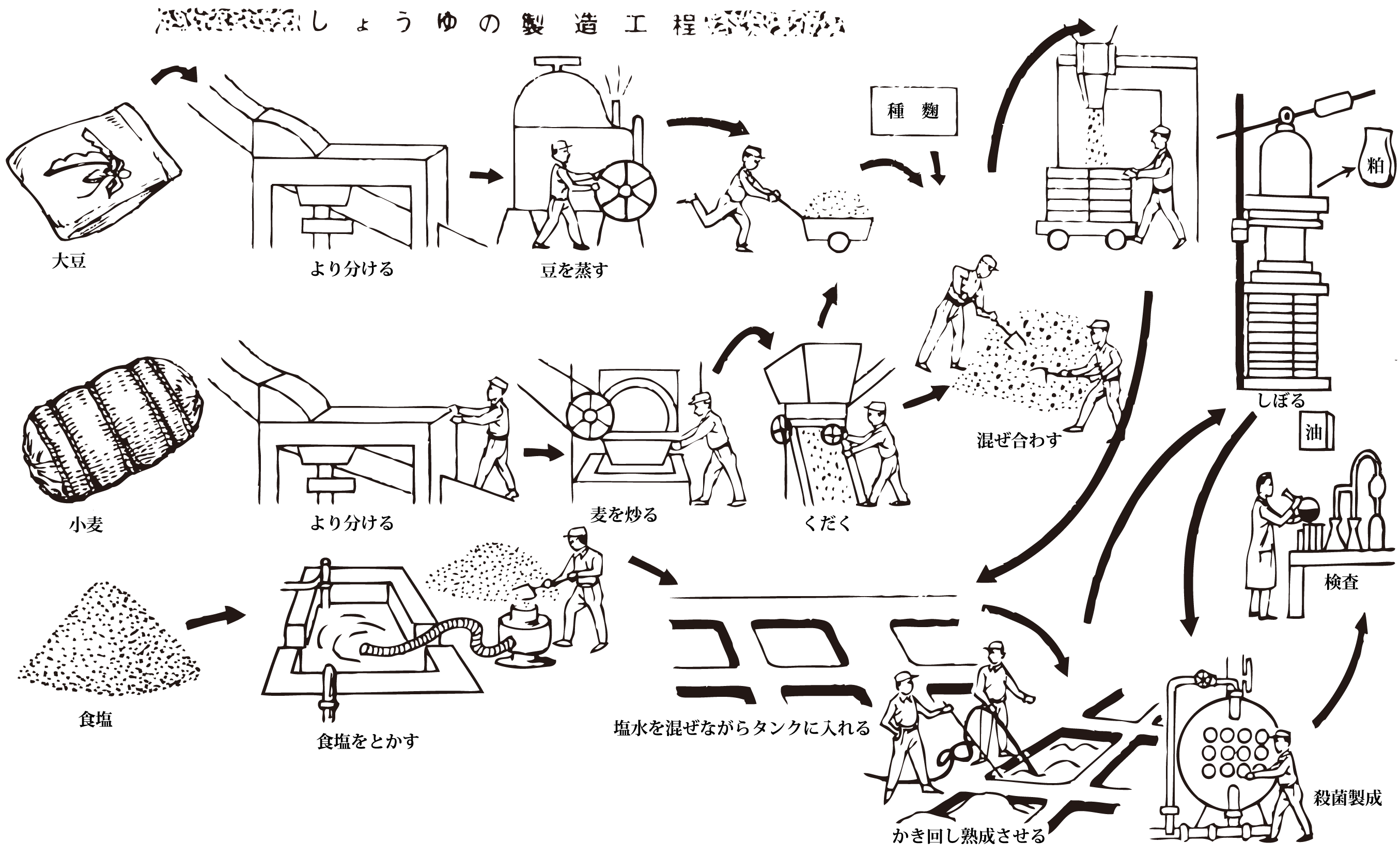 Process Of Production Of Soy Sauce