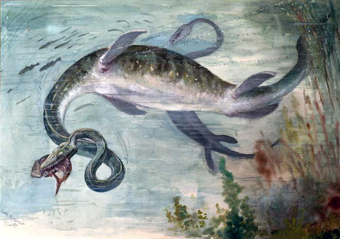 https://i0.wp.com/upload.wikimedia.org/wikipedia/commons/7/77/The_Snake-necked_Elasmosaurus.jpg
