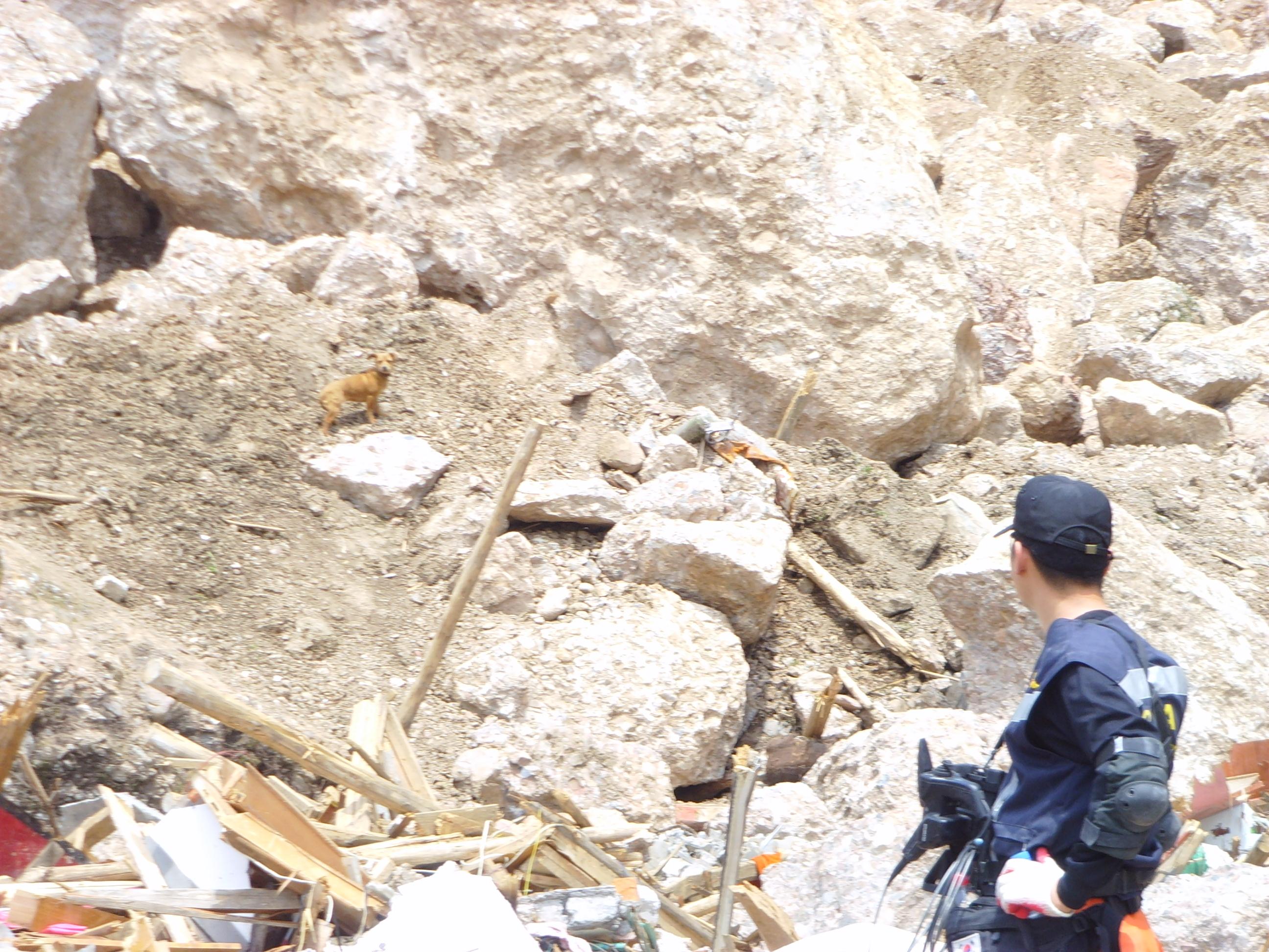 File:2008년 중앙119구조단 중국 쓰촨성 대지진 국제 출동(四川省 大地震. 사천성 대지진) SSL26931.JPG - Wikimedia Commons