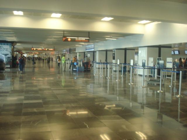 Don Miguel Hidalgo y Costilla International Airport