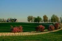 File:Manchester Farm, Lexington, Kentucky (2010-04-11 by ...