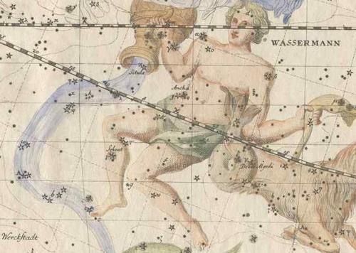 Aquarius by Bode