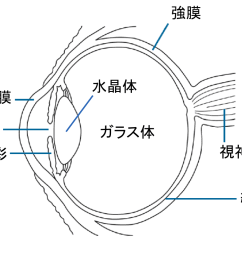 file eye diagram ja png [ 1024 x 839 Pixel ]