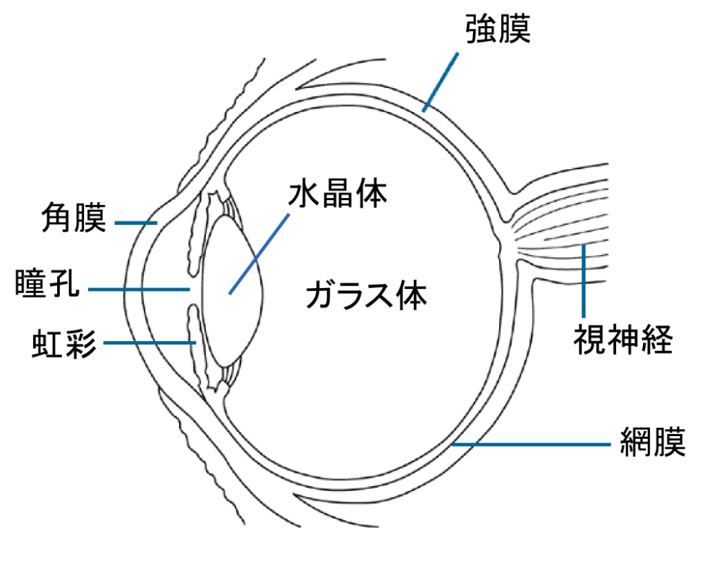 medium resolution of file eye diagram ja png