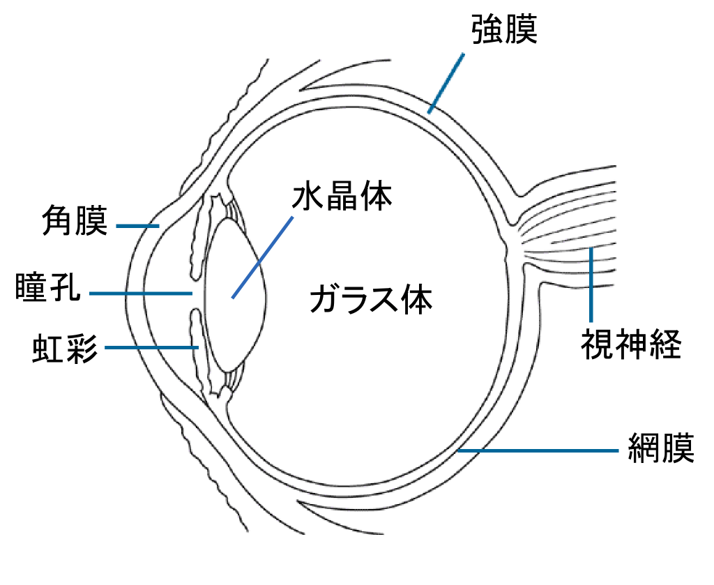 hight resolution of file eye diagram ja png