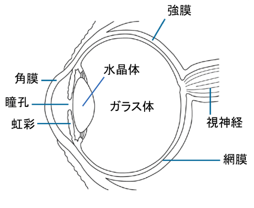 small resolution of file eye diagram ja png