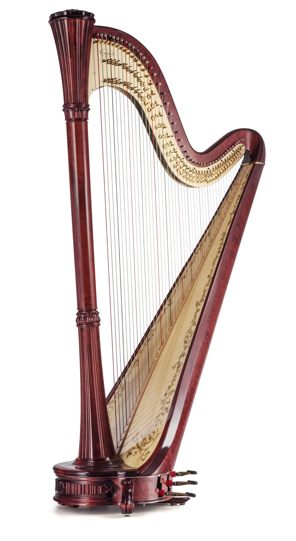 Salvi Harps  Wikipedia