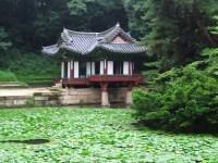 Korean garden (with images)  ecomusic  Storify