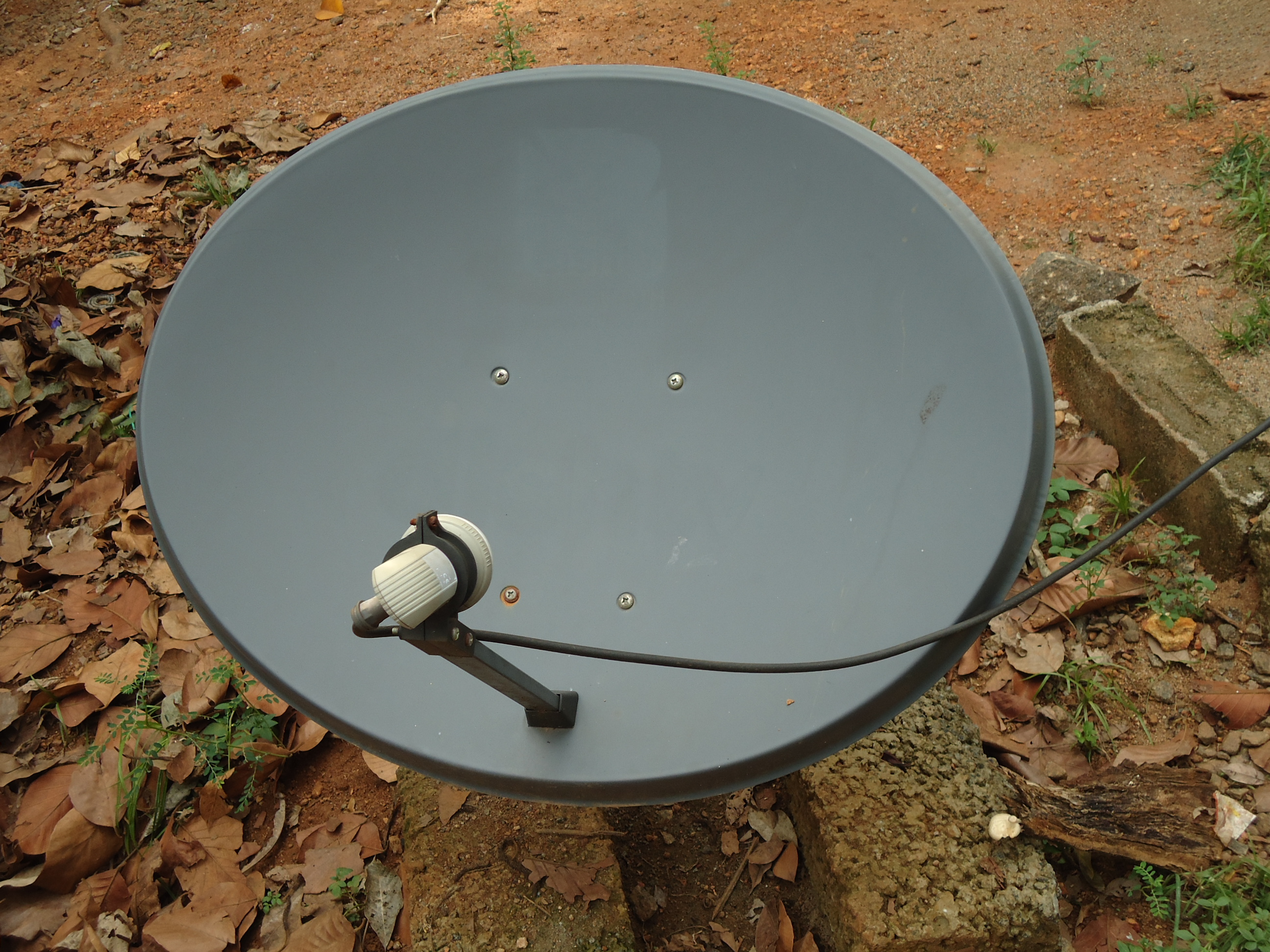 Ku-band satellite dish