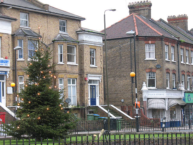 Greenwich Council Christmas Tree Collection