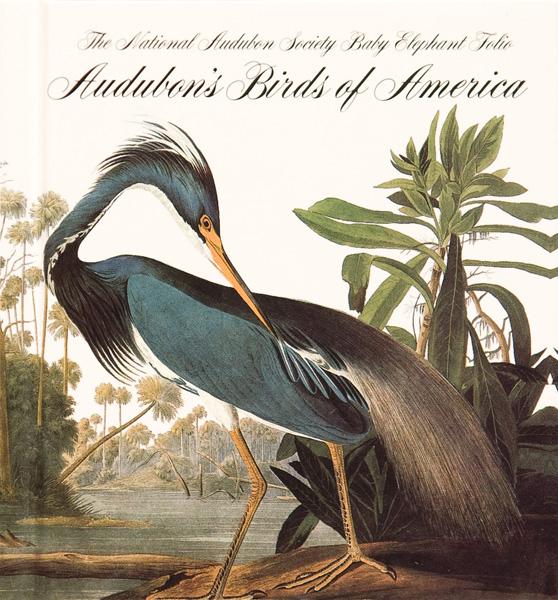 Audubon Birds of America.jpg