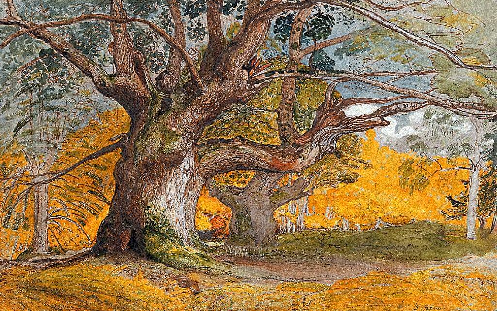 FileSamuel Palmer Oak Trees Lullingstone Parkjpg
