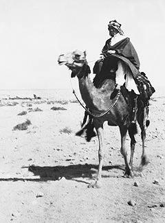 Lawrence at Aqaba, 1917