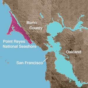 File:Wpdms usgs photo point reyes national seashore.jpg