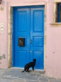File:Cat-at-a-blue-door.jpg - Wikimedia Commons