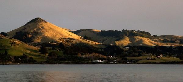Dunedin & Otago Peninsula Destination Guide - Triporati