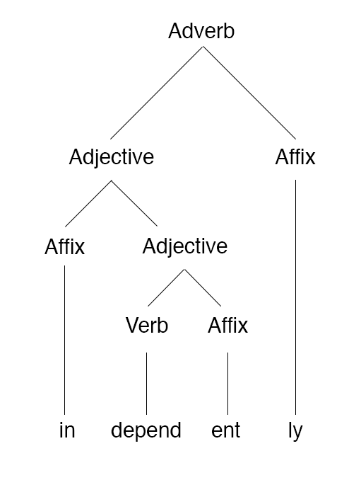 morphology tree diagram wiring for double light switch file independently png wikimedia commons
