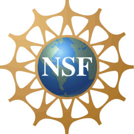 Image result for NSF logo