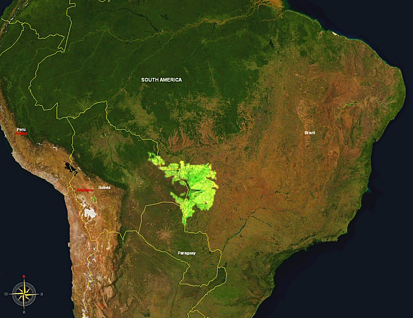 Das Pantanal in Suedamerika