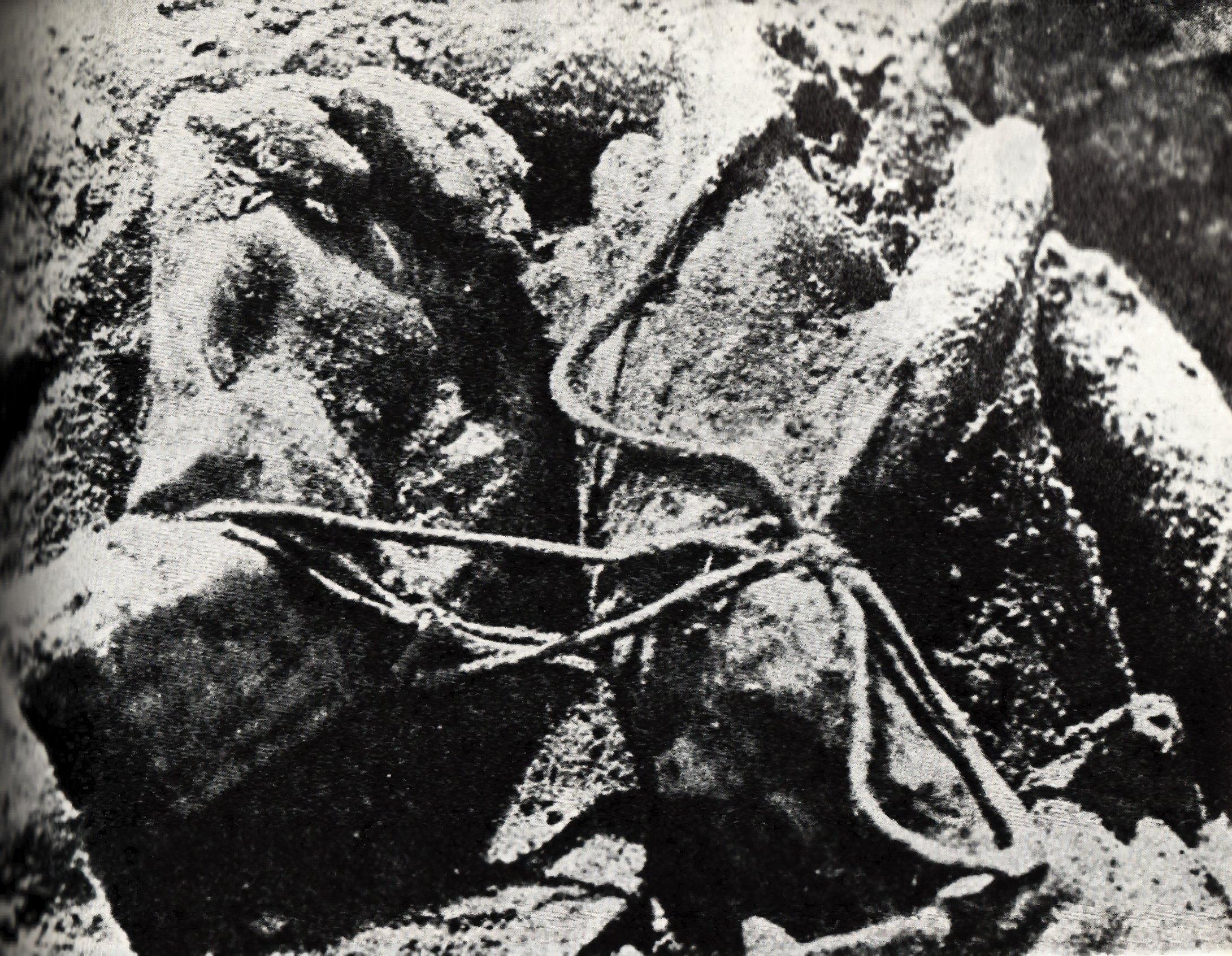 https://i0.wp.com/upload.wikimedia.org/wikipedia/commons/8/8c/Katyn_massacre.jpg