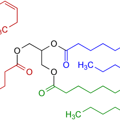 Fat Structure Diagram 2003 Saturn L200 Rear Brakes Wikipedia Example Of A Natural Triglyceride With Three Different Fatty Acids One Acid Is Saturated Blue Highlighted Another Contains Double Bond Within