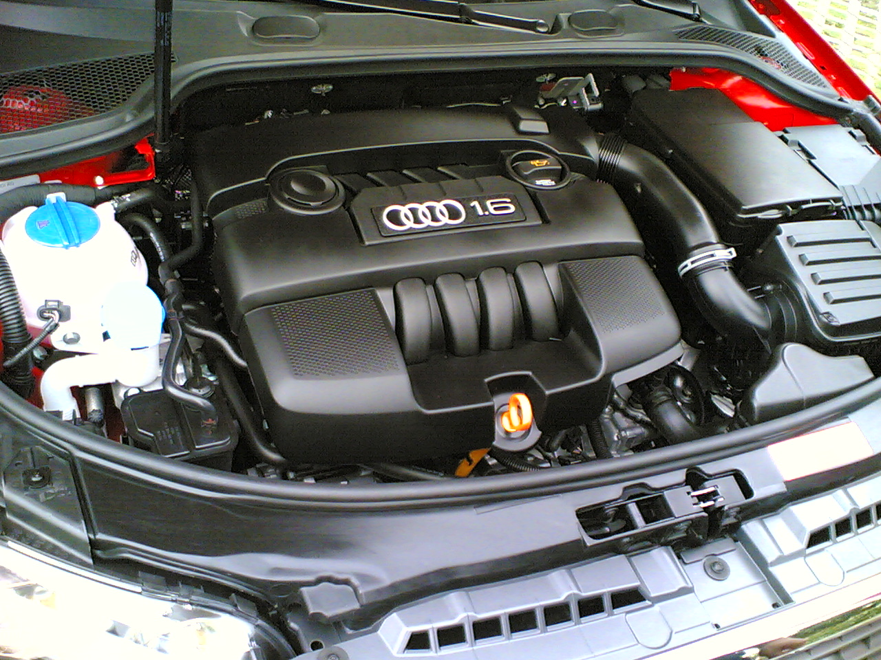 audi engine coolant