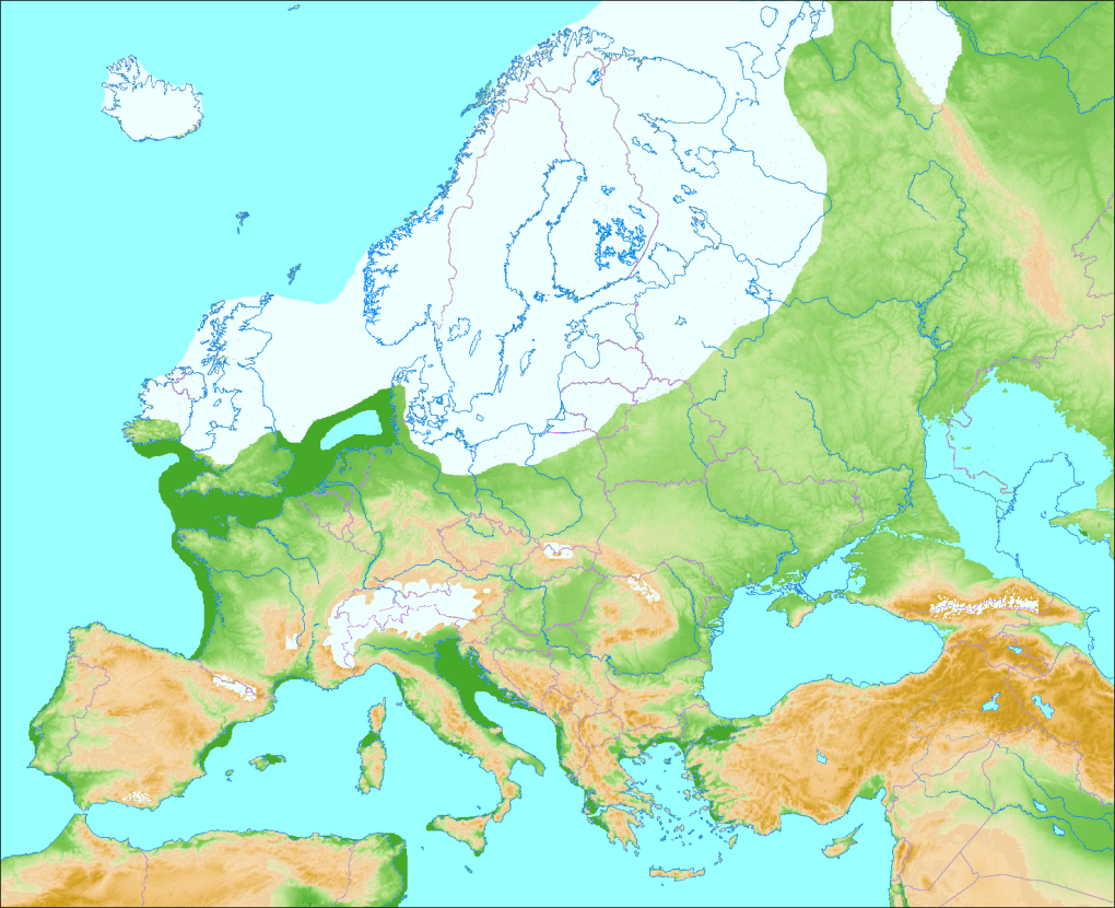 Europe in ice age