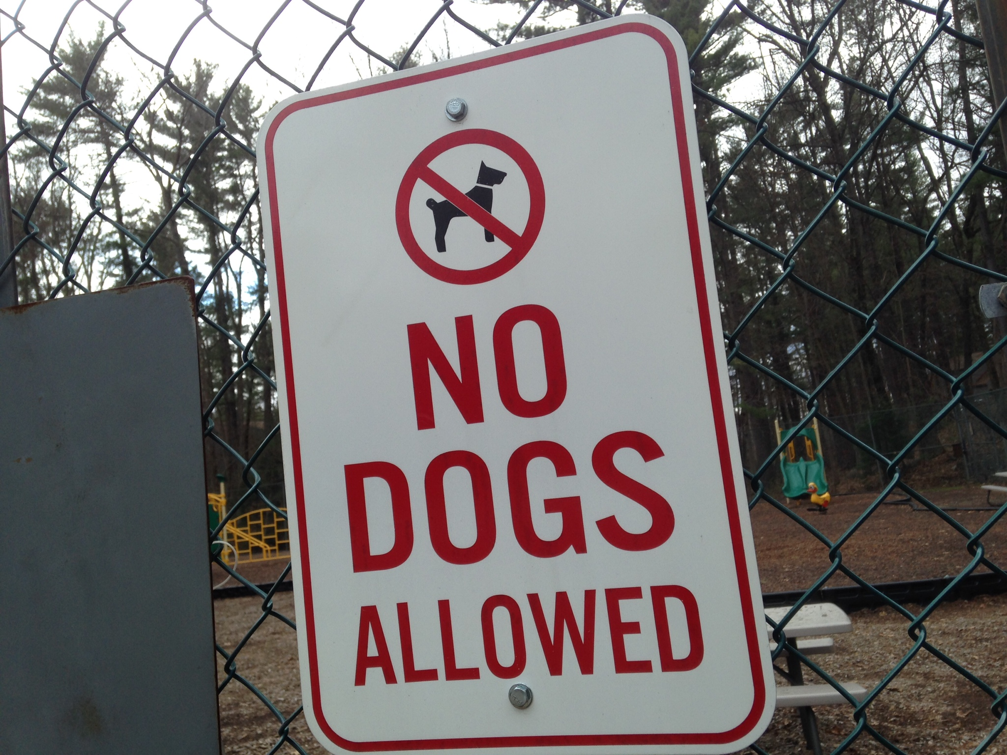 File No Dogs Allowed Sign
