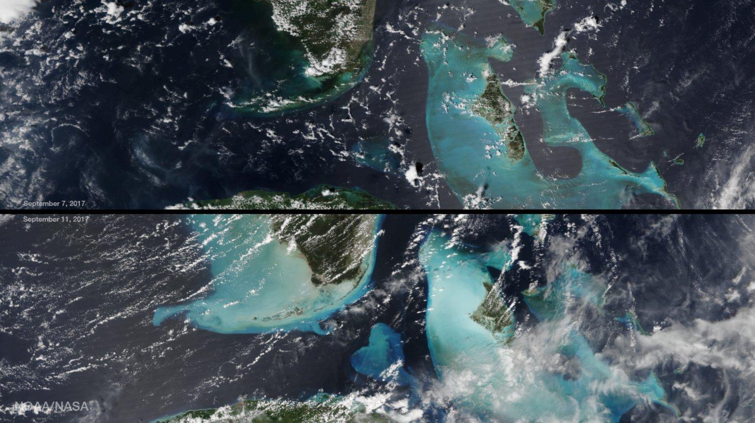 hurricane irma wikipedia