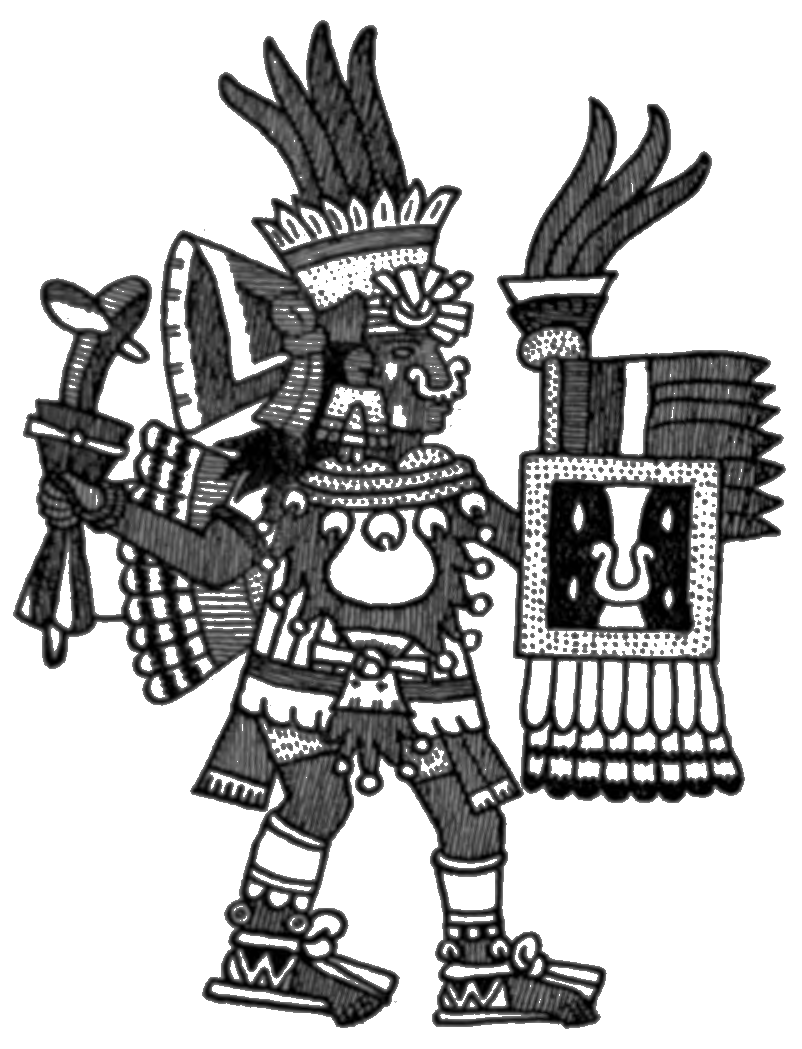 The Conquest of Mexico Volume 1/Book I/Chapter II