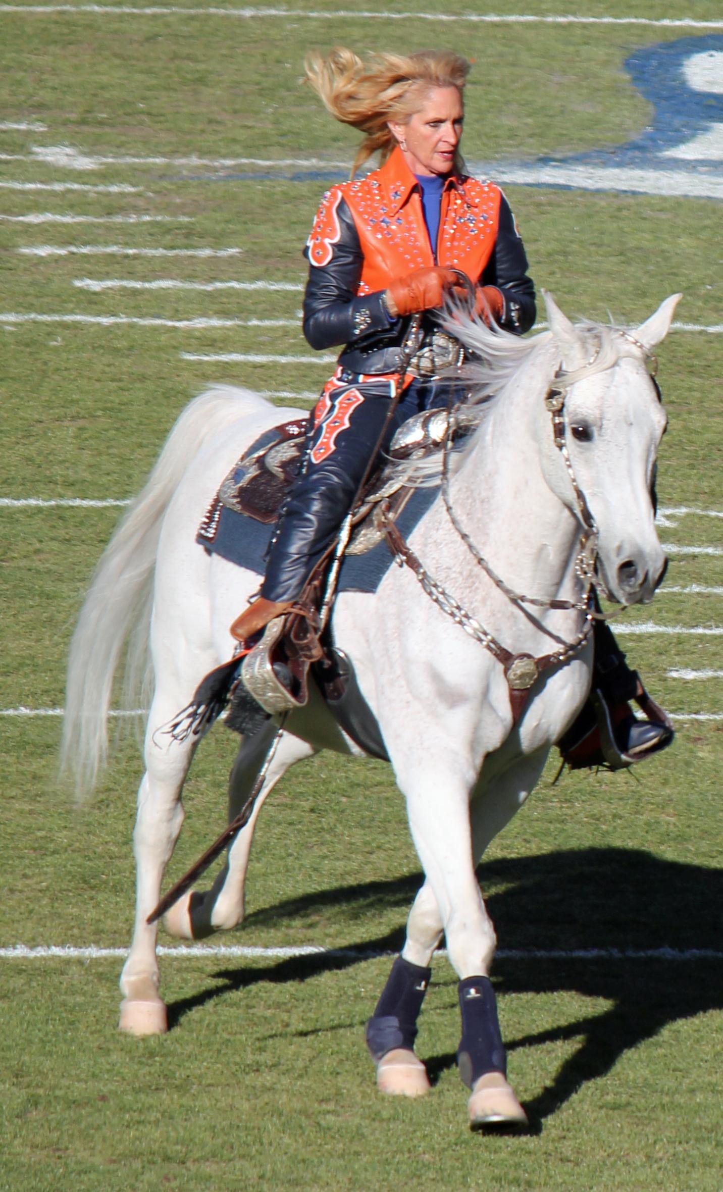 Thunder Mascot Wikipedia