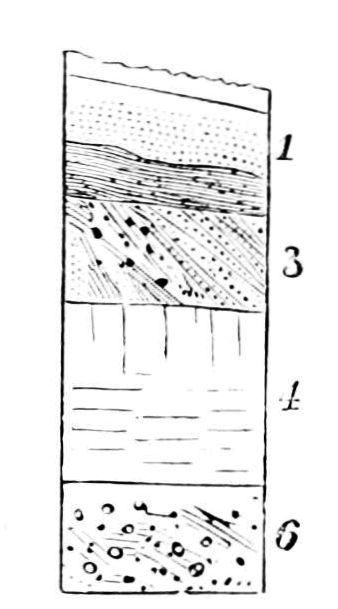 File:PSM V12 D083 Soil layers of glacial activity.jpg